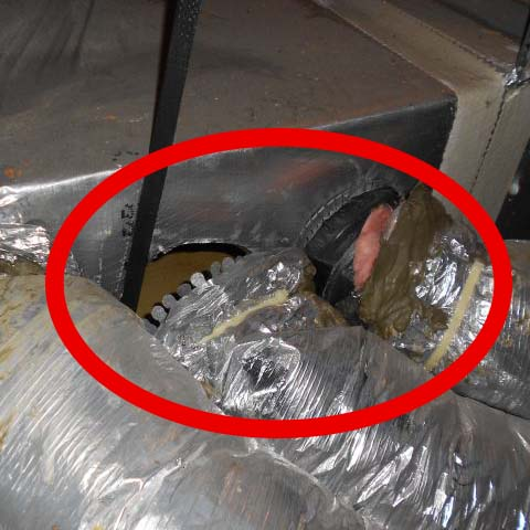 Ducts that have fallen off the HVAC system's supply plenum.